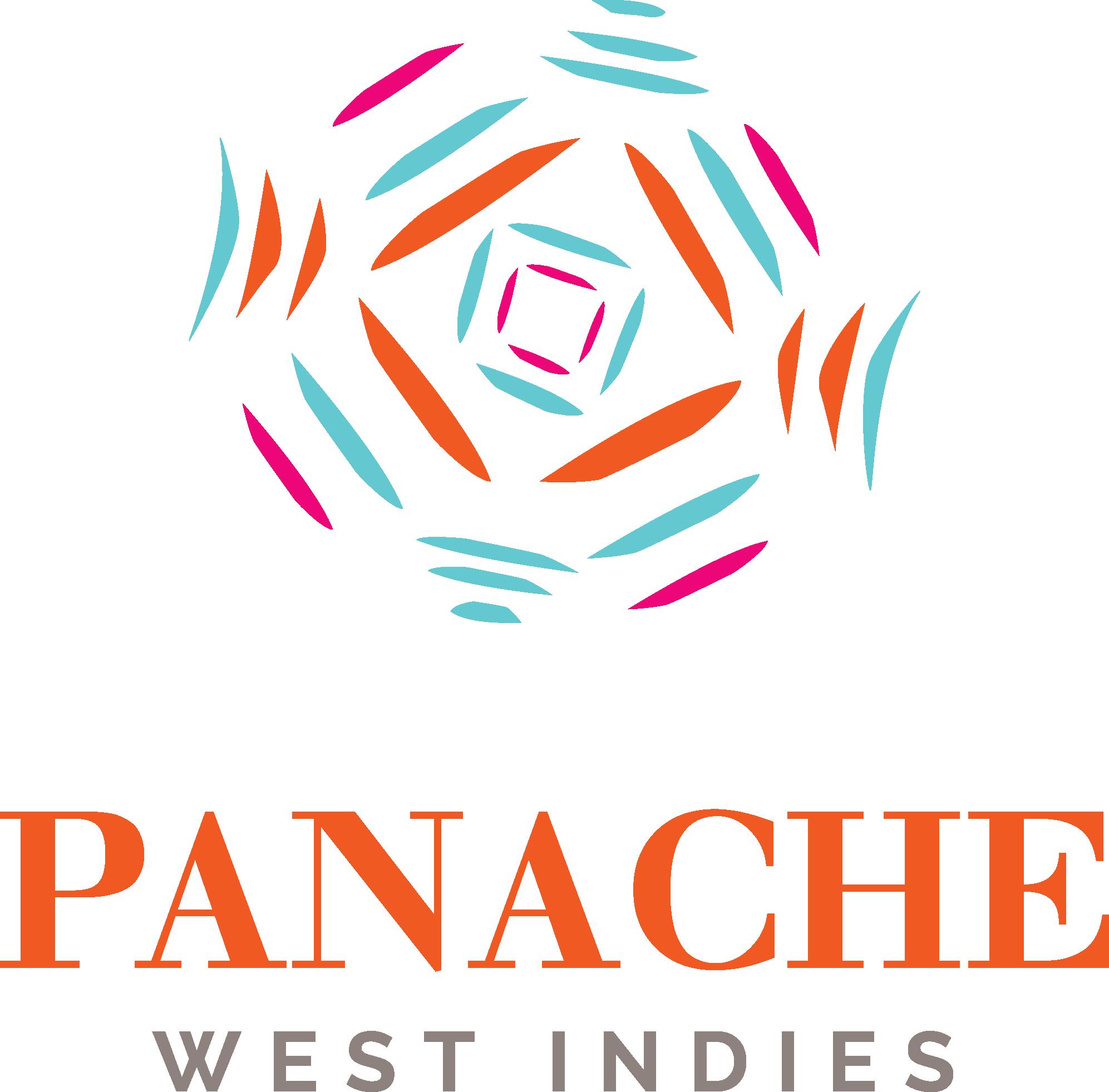 creation logo panache